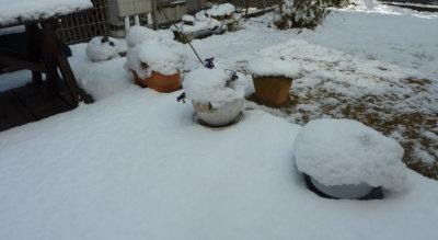 ①積雪3[1]