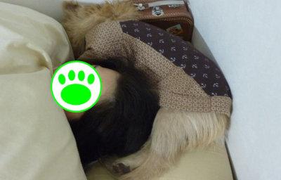 ⑫ママと寝るマー坊[1]