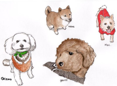 dogs[1]
