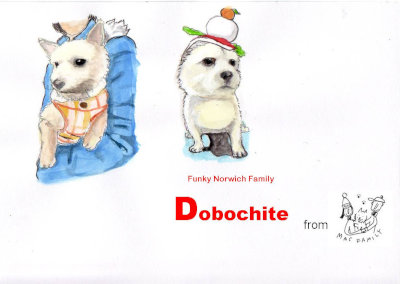 Dear Dobochite Family[1]