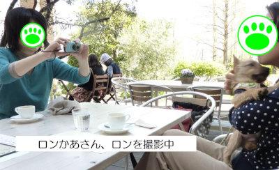 ⑥ロン撮影[1]