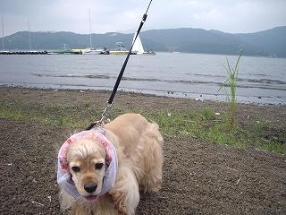 s-山中湖