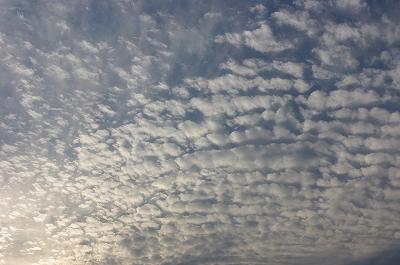 s-鰯雲2