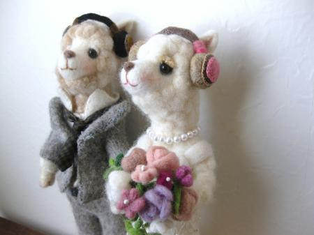 wedding alpaca 3
