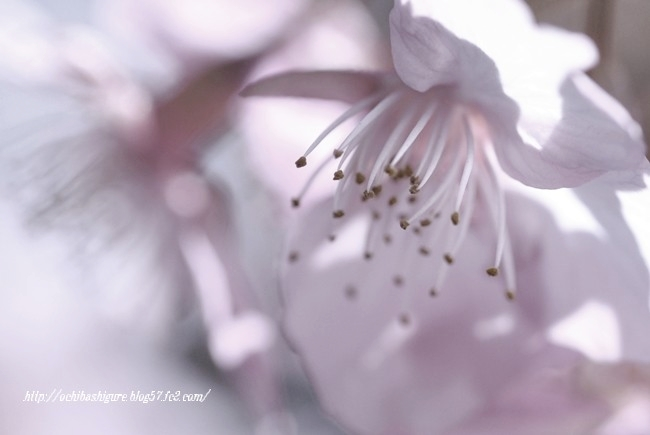 2012_04_07_05.jpg