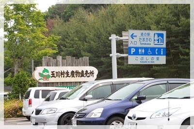 2011_0605_124250AA.jpg