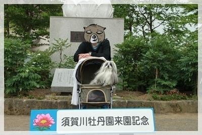 2011_0605_151133AA.jpg