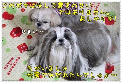 IMG_9789.jpg