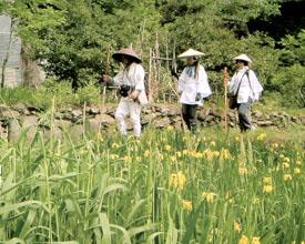 四国遍路旅の風景