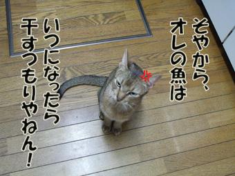 soyakara