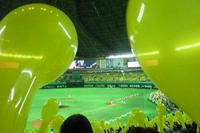 20110729野球 (5)