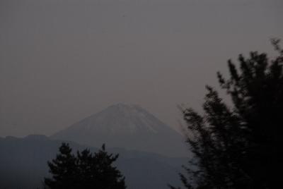 20091019-204.jpg