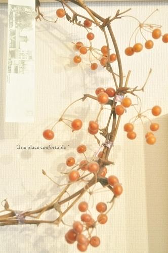 2011.11 ブログ用フォト 005