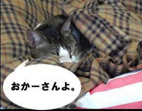 uwaki2.jpg