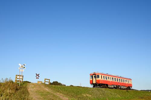 20111204.jpg
