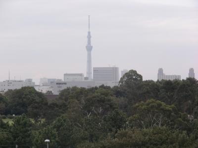 JR新木場駅からの東京スカイツリー