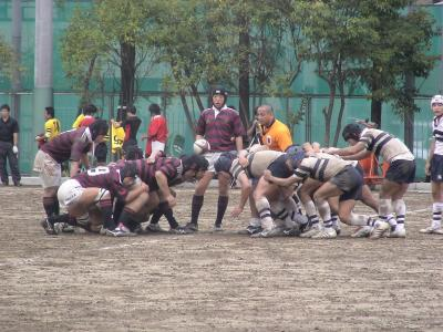 早稲田実-学習院