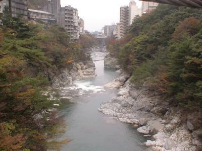 滝見橋からの眺め