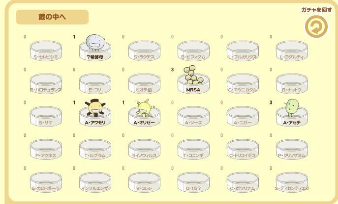 moyashi.jpg