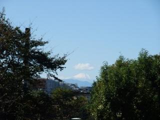 2009 11.3 富士山