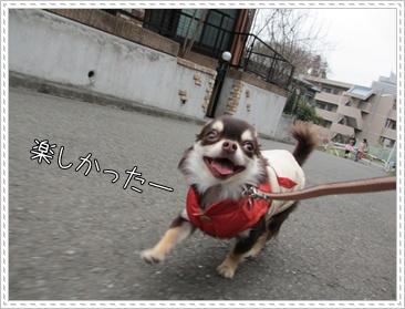 SIMG_3785.jpg