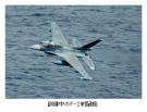 航空自衛隊 三菱 F2 01