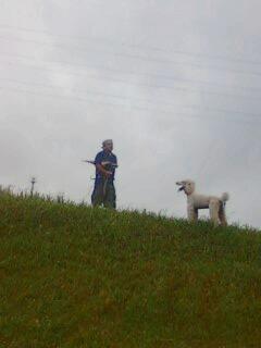 画像-犬と人