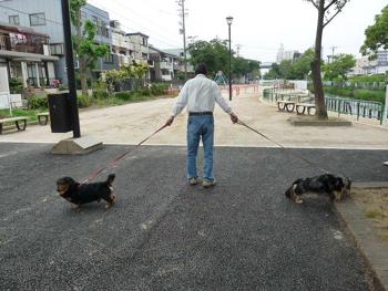 名古屋5P1070591