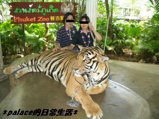 プーケット動物園 9・15