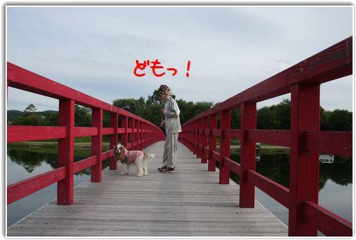 この赤い橋が素敵