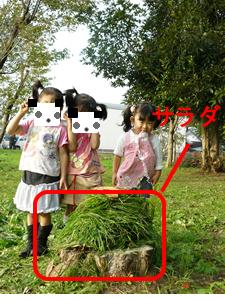 P1090325_s.jpg