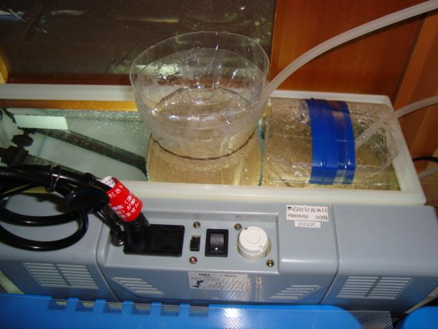 我が家のブライン孵化し器機(1)。