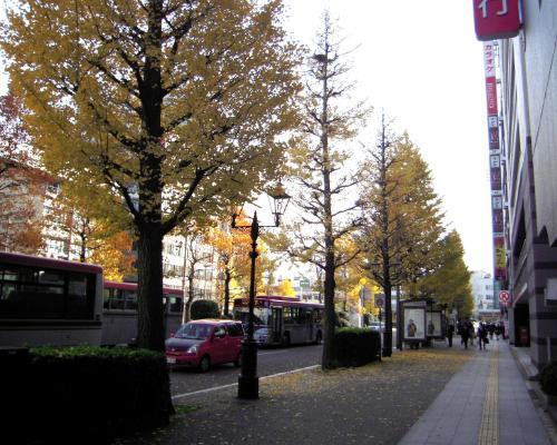 新潟駅付近散歩5