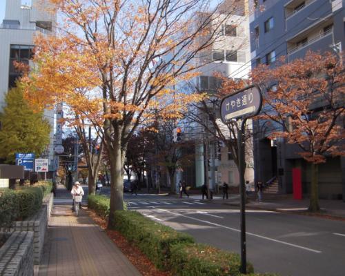 新潟駅付近散歩2