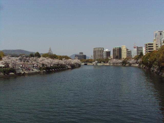 平和公園 桜1