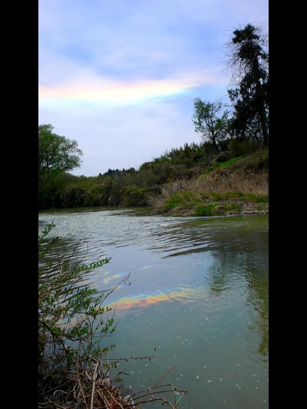 水平環のある川岸風景