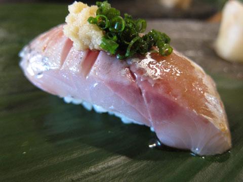 1106魚竹3