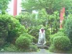 20110619墓参り&ビートル (1)-1