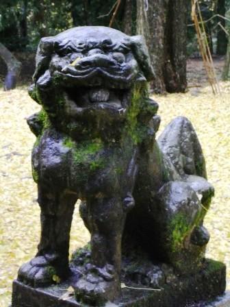 日吉神社市の瀬1