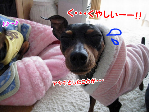 IMG_4735.jpg