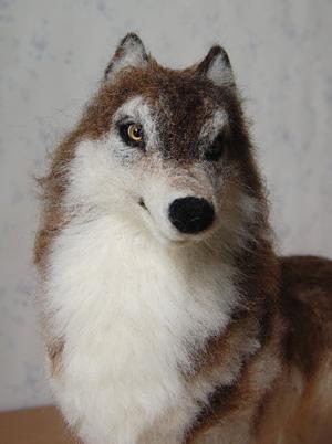 0509wolf3.jpg