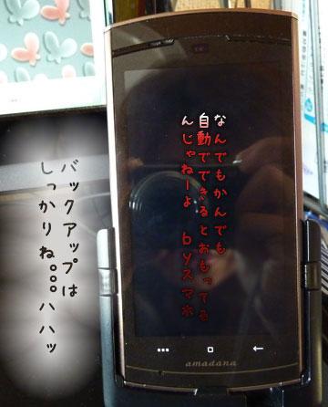 P1010817_20120219195114.jpg