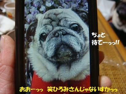 DSC03290_20110906052231.jpg