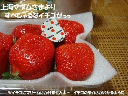 DSC03317.jpg