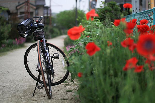 岡山県倉敷市自転車道 児島駅-下津井駅「風の道」