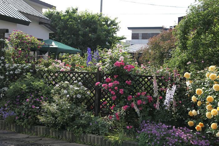1201夏の庭01