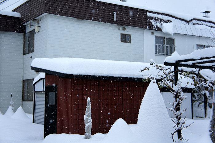 1112雪の日