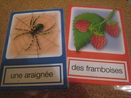 フランス語フラッシュカード2