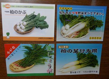 地元の野菜!