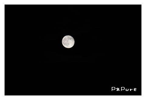moon8-7pp.jpg